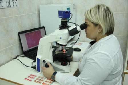 Проведение гистологических исследований мясной продукции с помощью оптического микроскопа