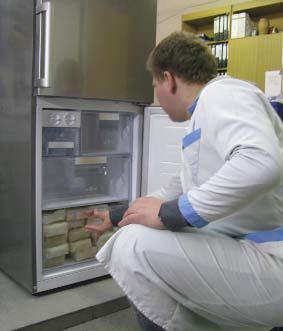 Загрузка М-пакетов (имитирующих постное мясо) в морозильные камеры холодильника для проверки на энергоэффективность.JPG