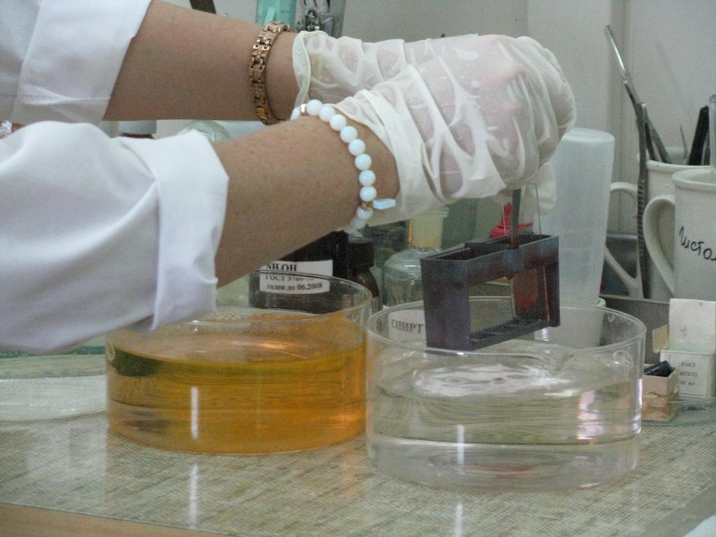 окрашивание образца тканей для гистологии
